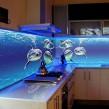 Дельфины на кухонном фартуке с подсветкой
