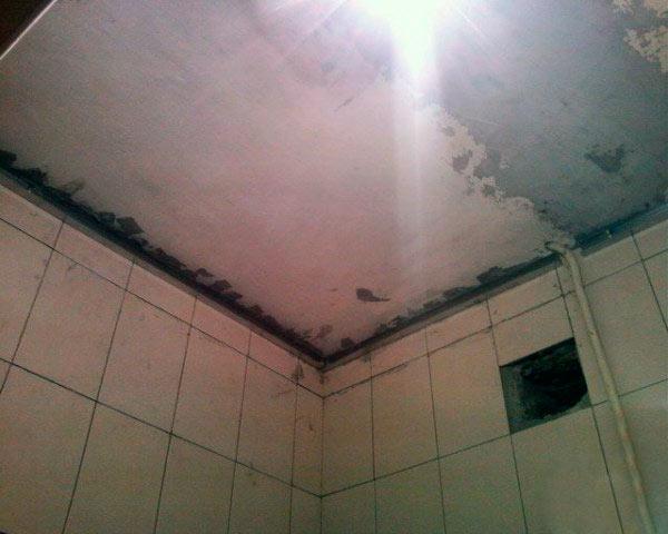 потолки в ванной комнате из пластиковых панелей фото