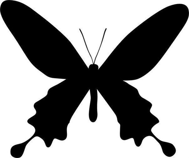 Бабочки из бумаги на стену своими руками фото 356