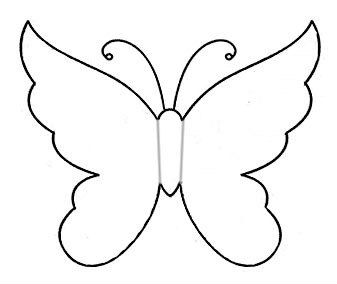 Бабочки 25