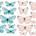 Стены самодельными бабочками