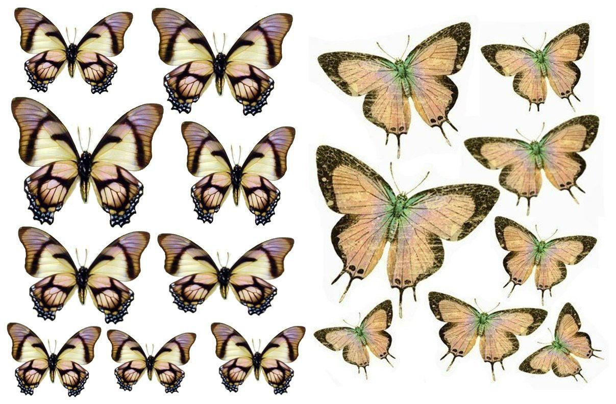 Декор стен бабочками своими руками фото 994