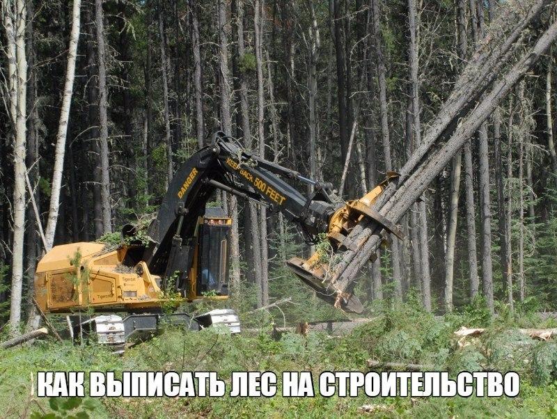 Кража со скольки рублей уголовная ответственность