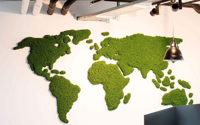 Стабилизационный мох в виде карты мира