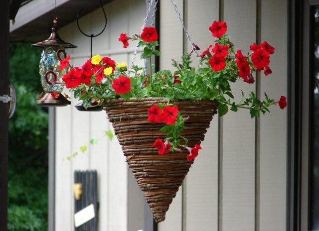 Лучшие поделки и хитрости для сада