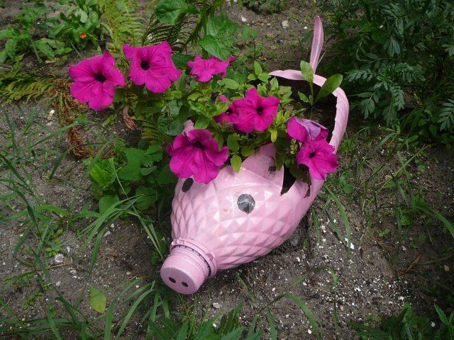 Пластиковая бутылка в виде свинки