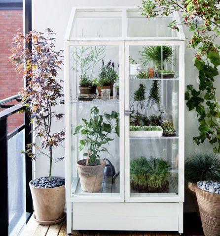 Цветочная витрина